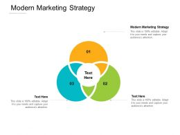 Modern Marketing Strategy Ppt Powerpoint Presentation Icon Display Cpb