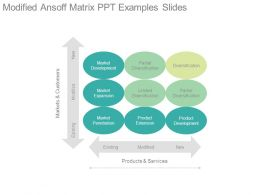 Modified Ansoff Matrix Ppt Examples Slides