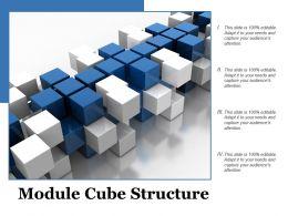 Module Cube Structure