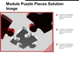 Module Puzzle Pieces Solution Image