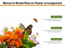 Monarch Butterflies On Flower Arrangement