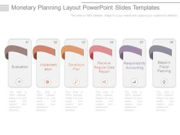 Monetary Planning Layout Powerpoint Slides Templates