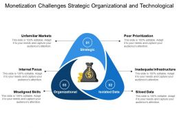 Monetization Challenges Strategic Organizational And Technological