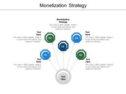 Monetization Strategy Ppt Powerpoint Presentation Pictures Show Cpb