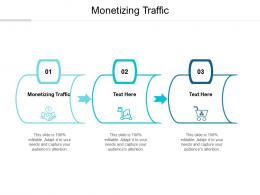 Monetizing Traffic Ppt Powerpoint Presentation Portfolio Icon Cpb