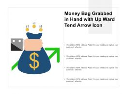 Money Bag Grabbed In Hand With Up Ward Tend Arrow Icon