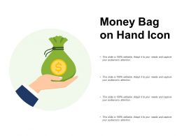Money Bag On Hand Icon