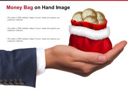 Money Bag On Hand Image