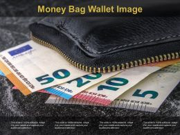 Money Bag Wallet Image