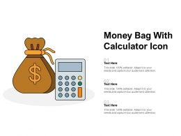 Money Bag With Calculator Icon