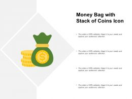 Money Bag With Stack Of Coins Icon