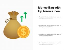 Money Bag With Up Arrows Icon