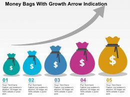 Money Bags With Growth Arrow Indication Flat Powerpoint Design