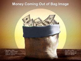 Money Coming Out Of Bag Image