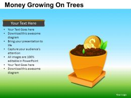 Money Growing On Trees Powerpoint Presentation Slides DB