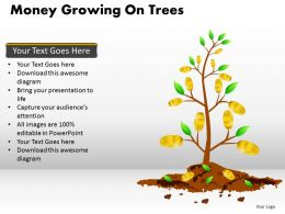 Money Growing on Trees PPT 10
