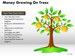 Money Growing on Trees PPT 13
