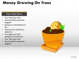 Money Growing on Trees PPT 2