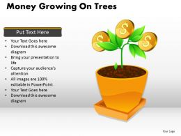 Money Growing on Trees PPT 3