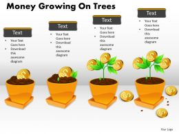 Money Growing on Trees PPT 5