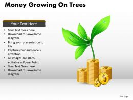 Money Growing on Trees PPT 6