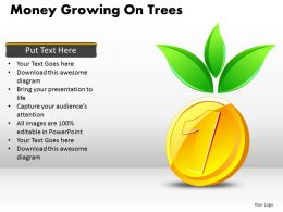 Money Growing on Trees PPT 7