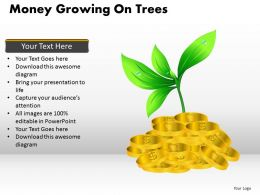 Money Growing on Trees PPT 8