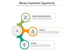 Money Investment Opportunity Ppt Powerpoint Presentation Gallery Elements Cpb
