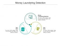 Money Laundering Detection Ppt Powerpoint Presentation Infographics Template Cpb
