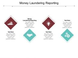 Money Laundering Reporting Ppt Powerpoint Presentation Professional Cpb