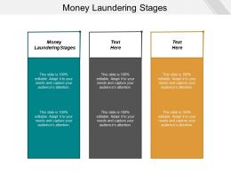 Money Laundering Stages Ppt Powerpoint Presentation Portfolio Outline Cpb