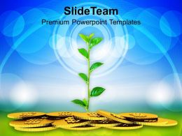 Money Plant Concept Finance PowerPoint Templates PPT Themes And Graphics 0213
