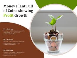 Money Plant Full Of Coins Showing Profit Growth