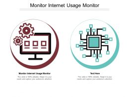 Monitor Internet Usage Monitor Ppt Powerpoint Presentation Styles Icon Cpb