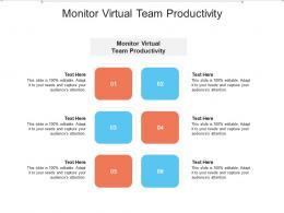 Monitor Virtual Team Productivity Ppt Powerpoint Presentation Styles Ideas Cpb