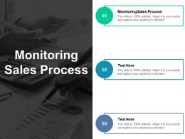 Monitoring Sales Process Ppt Powerpoint Presentation Portfolio Icon Cpb