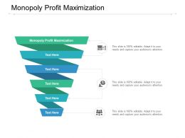 Monopoly Profit Maximization Ppt Powerpoint Presentation Diagram Graph Charts Cpb