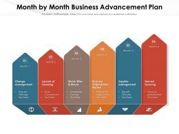 Month By Month Business Advancement Plan