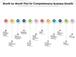 Month By Month Plan For Comprehensive Business Growth