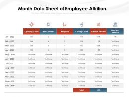 Month Data Sheet Of Employee Attrition