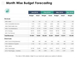 Month Wise Budget Forecasting Revenues Ppt Powerpoint Presentation Example