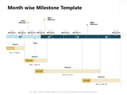 Month Wise Milestone Marketing Ppt Powerpoint Presentation Aids