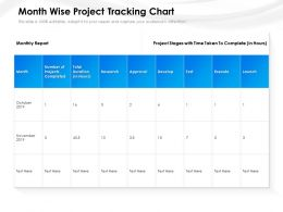Month Wise Project Tracking Chart