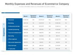 Monthly Expenses And Revenues Of Ecommerce Company