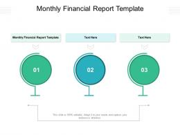 Monthly Financial Report Template Ppt Powerpoint Presentation Gallery Images Cpb