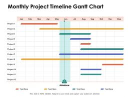 Monthly Project Timeline Gantt Chart Ppt Powerpoint Presentation Portfolio Graphic