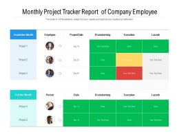 Monthly Project Tracker Report Of Company Employee
