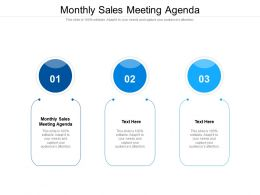Monthly Sales Meeting Agenda Ppt Powerpoint Presentation Portfolio Samples Cpb
