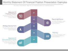 Monthly Statement Of Financial Position Presentation Examples