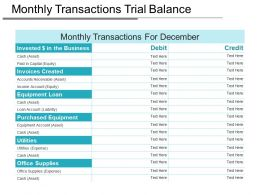 Monthly Transactions Trial Balance Ppt Example